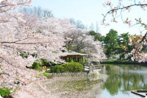 刈谷市桜まつり・亀城公園