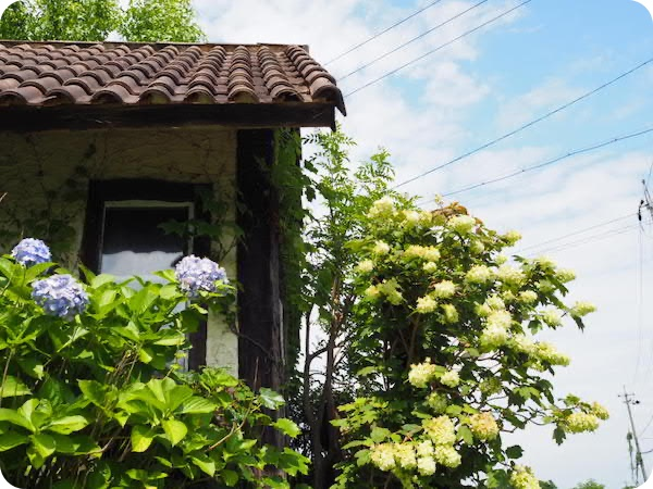知多郡東浦町ぬく森カフェ