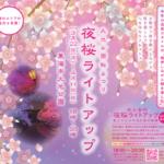 大池公園桜まつりライトアップ